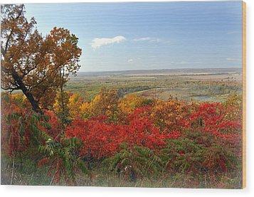 Across The Big Muddy Wood Print by Marty Koch