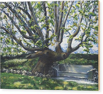 Adamson Home Tree Wood Print by Randy Sprout
