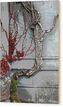 Wood Print featuring the photograph Adare Ivy by Charlie and Norma Brock