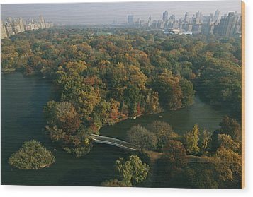 Aerial View Of Central Park Wood Print by Melissa Farlow