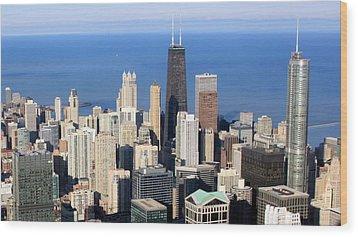 Aerial View Of Chicago Wood Print by Luiz Felipe Castro