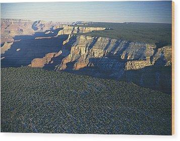 Aerial View Of Kaibab Wood Print by Norbert Rosing