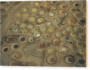 Aerial View Of Multi-colored Dyeing Wood Print by Bobby Haas