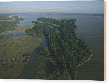 Aerial View Of The James River Wood Print by Ira Block