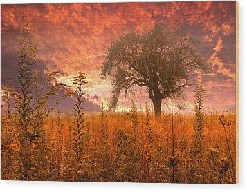 Aflame Wood Print by Debra and Dave Vanderlaan