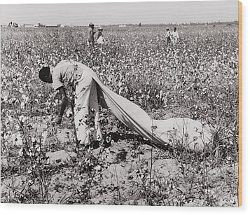 African American Day Laborer Picking Wood Print by Everett