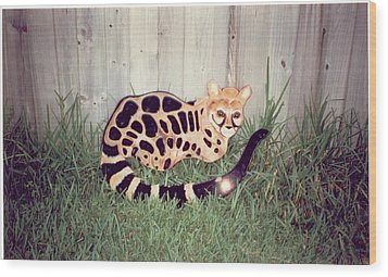 African Genet Wood Print by Val Oconnor