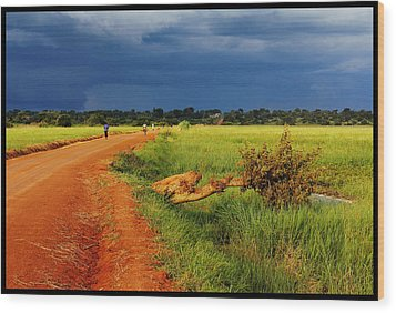 African Landscape Wood Print by Marian Barbu