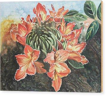 African Tulip Wood Print by Karen Casciani