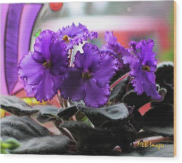 Wood Print featuring the photograph African Violets by Margaret Buchanan