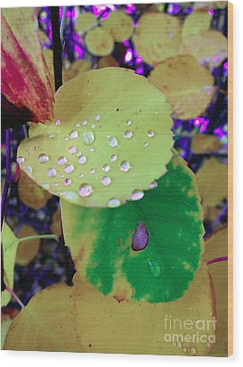 After Rain Wood Print by Michelle Bergersen