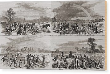After The Civil War Many African Wood Print by Everett