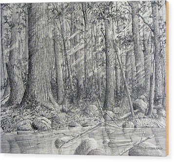 Wood Print featuring the drawing After The Flash Flood by Jim Hubbard