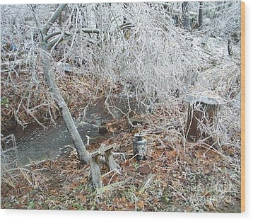 After The Ice Storm In Maine Wood Print by Jeannie Atwater Jordan Allen