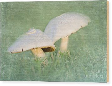 After The Rain Wood Print by Betty LaRue