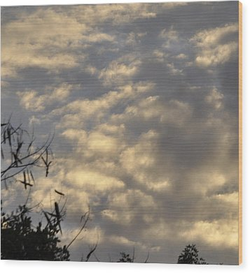 After The Storm Wood Print by Sandy Poore