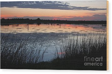 After The Sun Sets Wood Print by Jennifer Zelik