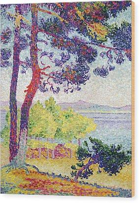 Afternoon At Pardigon Wood Print by Henri-Edmond Cross