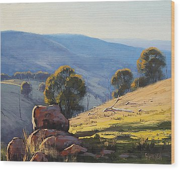 Afternoon Light Turon Hills Wood Print by Graham Gercken