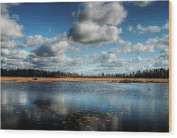 Afternoon Reflections At The Marsh Wood Print by Heather  Rivet