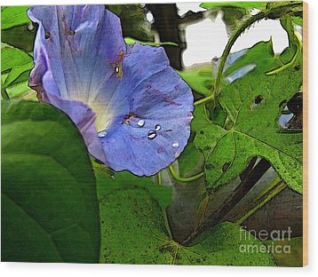 Wood Print featuring the digital art Aging Morning Glory by Debbie Portwood