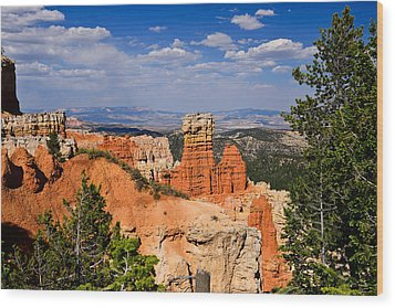 Agua Canyon Bryce Canyon National Park Wood Print by Greg Norrell