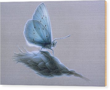 Wood Print featuring the painting Ainsae by Shawn Kawa