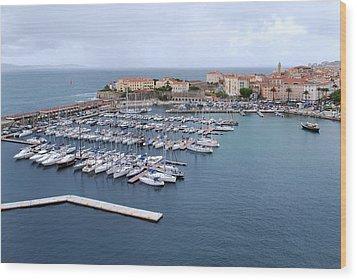 Ajaccio Harbour. Wood Print by Terence Davis