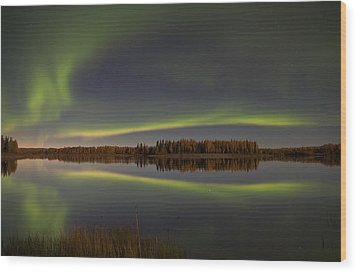Alaska Delight Wood Print