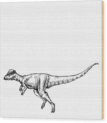 Alaskacephale Dinosaur Wood Print by Karl Addison