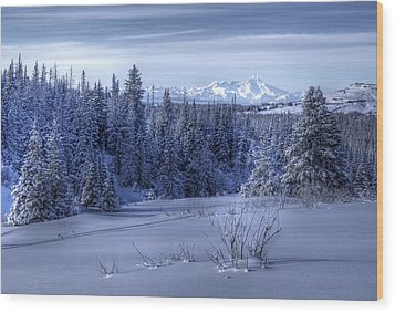 Alaskan Winter Landscape Wood Print by Michele Cornelius