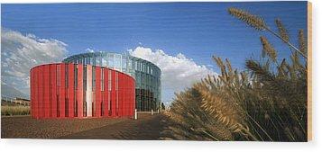 Alcorcon Arts Creation Centre Wood Print by Carlos Dominguez