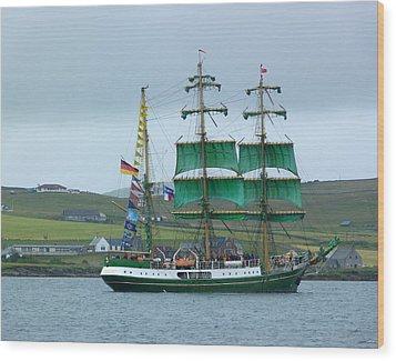 Wood Print featuring the photograph Alexander Von Humboldt by Lynn Bolt