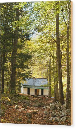 Alfred Reagan House Wood Print by Lena Auxier
