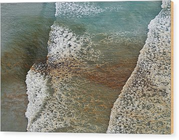 Algal Bloom Wood Print by Peter Chadwick