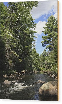 Algonquin Odes Three Wood Print by Alan Rutherford