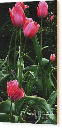 Wood Print featuring the digital art All About Tulips by Glenna McRae