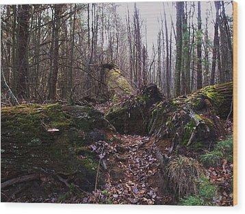 All Fall Down Wood Print by Anna Villarreal Garbis