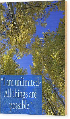All Things Are Possible Wood Print by Dana Kern