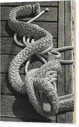 All Tied Up Wood Print by Bob Wall