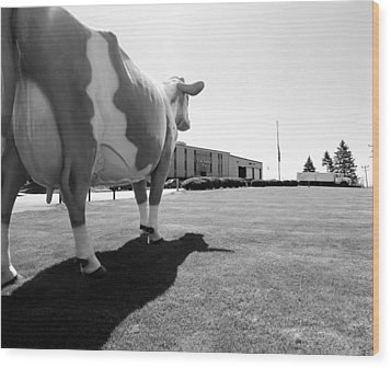 All We Have We Owe To Udders Wood Print by Jan W Faul