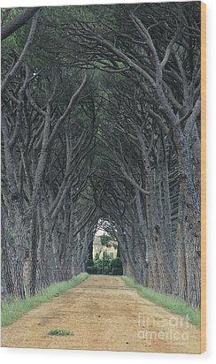 Alley . Provence Wood Print by Bernard Jaubert