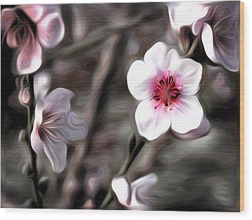Almond Blossom Wood Print by Meir Ezrachi