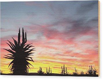 Aloe Ferox  South Africa Wood Print by Neil Overy