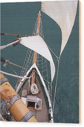 Aloft Wood Print by David Barringhaus
