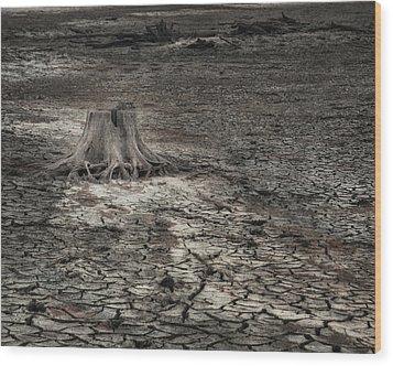 Alone Wood Print by Brenda Bryant