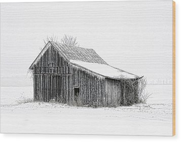 Wood Print featuring the photograph Alone In The Snow by Mary Timman