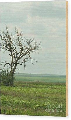 alone on the Prairie Wood Print