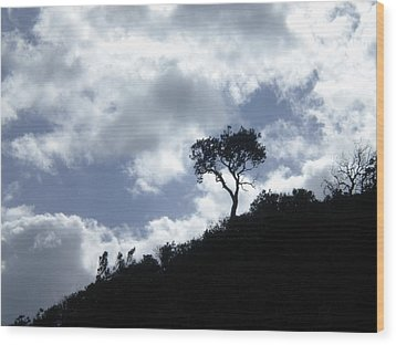Alone Wood Print by Sandra Phryce-Jones
