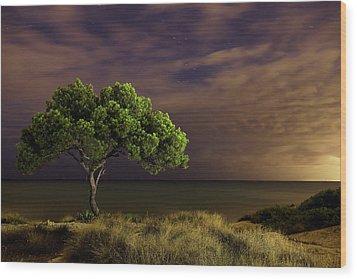 Alone Tree Wood Print by Alex Stoen Photography